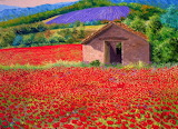 ^ Poppy and Lavender Field ~ Jean-Marc Janiaczyk