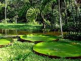 Fond-ecran-nature-paysages-paysages-sublime-023