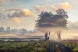 Jesienna mgła- foto - Radosław Gajzler