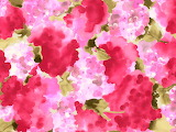 #Abstract Pink Hydrangea