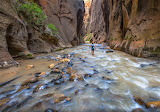 Hiking the Narrows Zion National Park
