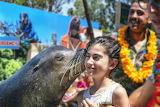 Show, aquarium, sea lion, little girl, kiss