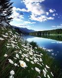 Amazing-Beautiful-Places-5