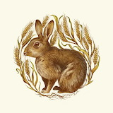 Teagan White, Rabbit in Wheat