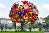 One of the biggest BOUQUET!!