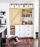 Kitchen With Storage and a Dog