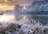 River, grass, trees, frost, cold, winter, sunrise, nature