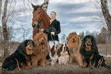 woman with horse and dogs