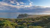 Landscape Cove