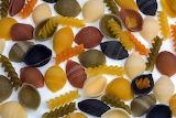 Noodles clam pasta colorful