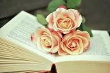 Roses et livre