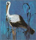 "Birds tumblr dogstardreaming Stork""Mirko Hanák"" Czech 1921-1971"