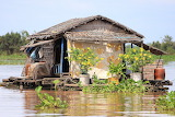 River house - Cambodia