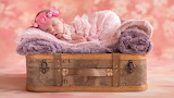Baby, sleep, girl, suitcase, wreath, sleeping, blanket, flowers