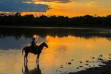 Sunset man on horse Pantanal Brazil