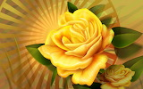 Yellow rose-wide