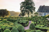 Unique Topiary