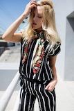 Pucci Stripes(2)