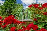 ☺♥ Pretty park...