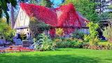 #Spring Cottage