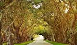 #Bridge Road Hobe Sound Florida