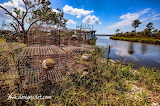 Old Nets Crab Pots Bon Secour River Alabama