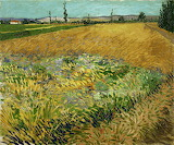 Wheat Field with Alpilles Foothills 1888, Van Gogh