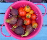 FigsAndTomatoes