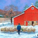 Tending the Sheep~ John Sloane
