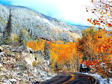 Unique Blending of Colors Aspen Colorado USA