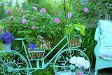 Vélo au jardin