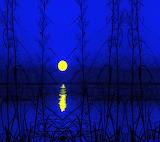 Blue Night by Savanna