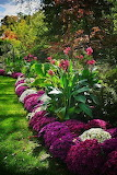 Nicely planted garden