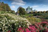 Fredensborg palace flower