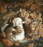 Bunnies nesting