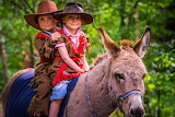 Donkey rides for kids at the Karl May Fest