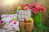 Apples, boots, flowers, tablecloth, basket, nature, autumn