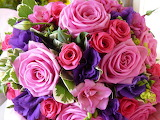 Beautiful Pink Bouquet of Flowers
