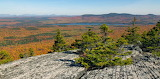Pleasant Pond Mountain Summit