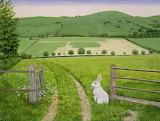^ Spring Rabbit - Ditz