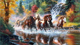 Animals-mark-waterfall-colors-horses-forest-landscapes-nature-ri