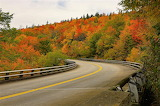 Fall colors mountain road