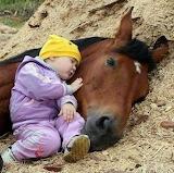 Baby&horse