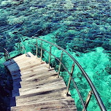 Blue green aesthetics