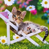 Relaxing...