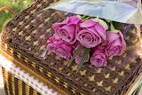 Flowers, basket, rose