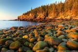 Otter-cliff- Maine