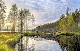 Footbridge European lake