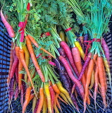 ^ Colors of the rainbow carrots