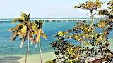 Florida's Key Bahia Honda State Park USA